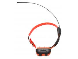 Collier Canicom NUM'AXES pour GPS