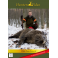 DVD Chasse au Sanglier