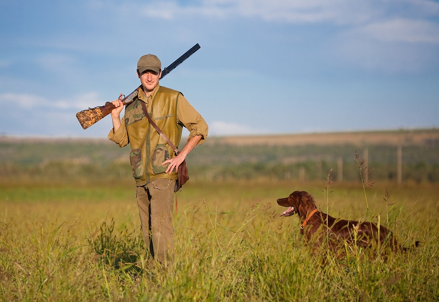 chasse hunting performance